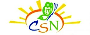 CSN Color Logo 2010 SUN ONLY-FINAL_1